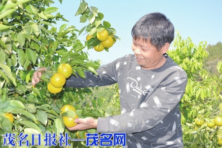 http://www.liuyubo.com/shehui/3633075.html